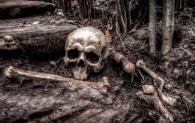 U Saudijskoj Arabiji pronađena ljudska kost stara 85.000 godina