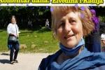 Komentar dana: Elvedina i Kadija