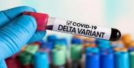 Vakcinisane osobe šire delta soj koronavirusa u istoj mjeri kao i nevakcinisane
