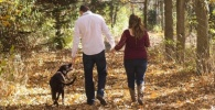Boravak u šumama: terapija za um, radost za srce i eliksir zdravlja za pluća