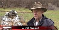 DR. SEMIR OSMANAGIĆ O AKTIVNOSTIMA FONDACIJE ZA RTV VISOKO